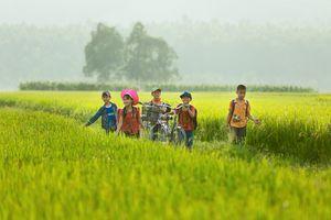 Thầy giáo Nam Định: Làm thiện nguyện từ hành động nhỏ