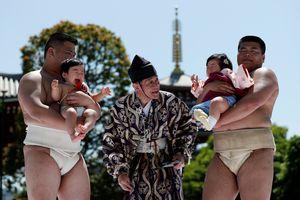 Sumo nhí thi khóc tại Nhật Bản