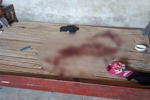 Bé gái 11 tuổi bị bố sát hại vì đòi đi tập múa trung thu