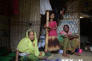Nhật Bản kêu gọi quốc tế ủng hộ Myanmar trong vấn đề người Rohingya