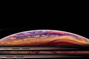 iPhone XS Max bán chạy gấp 4 lần iPhone XS