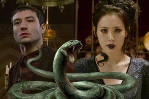 Trailer cuối cùng của 'Fantastic Beasts 2' đã xác nhận giả thuyết 'rắn chúa' Nagini là do mỹ nữ biến hình