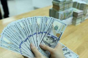 Tỷ giá trung tâm hôm nay tăng nhẹ, giá USD có xu hướng đi lên