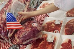 Hoa Kỳ đẩy mạnh xuất khẩu thịt heo sang Việt Nam
