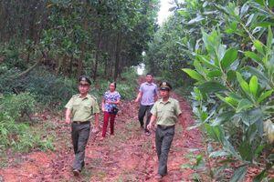Huyện có 33 thôn làm quy ước bảo vệ rừng