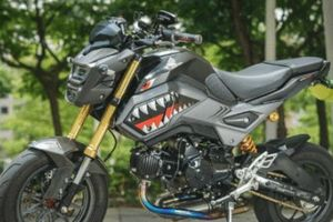 Honda MSX125 lên đồ chơi 'cá mập', đe nẹt vua côn tay Exciter