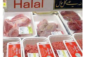 Xuất khẩu vào thị trường UAE và Kuwait: Cần có giấy chứng nhận Halal