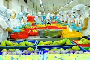 Tiếp tục cắt giảm 78,2% dòng hàng kiểm tra chuyên ngành lĩnh vực nông nghiệp