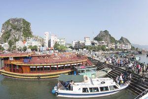 Xây dựng Vân Đồn trở thành đô thị biển đảo xanh