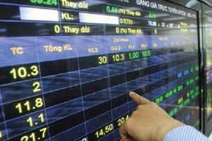 'Bốc hơi' 50% giá trị sau gần 1 tháng, TGG đi về đâu khi thêm 1,3 triệu cổ phiếu?