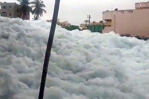 Clip: Núi bọt trắng độc hại tràn lên khắp đường phố Bangalore