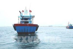 Hành trình cải tổ nghề cá nhân dân thành nghề cá có trách nhiệm
