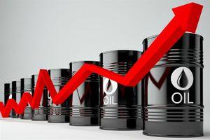 Chứng khoán tái khởi động với giá dầu
