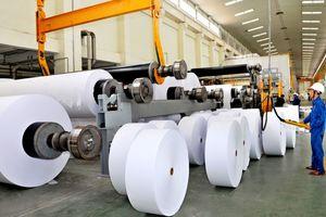 Nghịch lý của ngành giấy