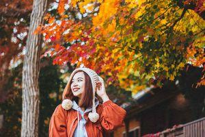 10 triệu đồng có đủ du lịch tự túc tới Hàn Quốc mùa thu không?