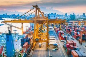 Chuyên gia ADB: Cắt giảm thủ tục hành chính giúp cải thiện môi trường đầu tư ở Việt Nam
