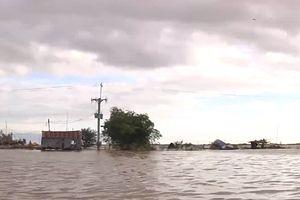 Hơn 5.000 học sinh bị ảnh hưởng bởi lũ trên sông Cửu Long
