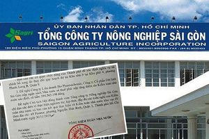 Tổng Công ty Nông nghiệp Sài Gòn sử dụng sai 1.900 ha đất