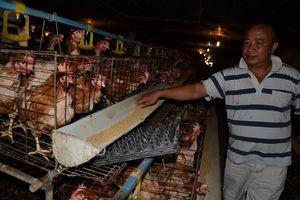 Chuỗi cung ứng thực phẩm an toàn giữa các tỉnh và Hà Nội: Được và chưa được