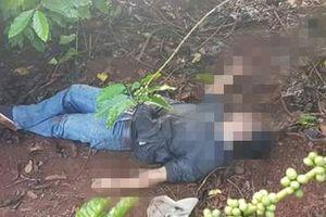 Người đàn ông tử vong trong rẫy cà phê nghi sốc ma túy