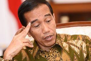 Indonesia sẽ thông báo người dân về tin giả mỗi tuần