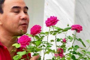 Vợ chồng Quyền Linh sửa sang lại ngôi biệt thự màu trắng 21 tỷ đồng