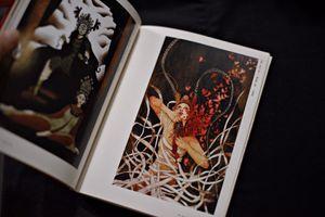 Sách ảnh về hát bội