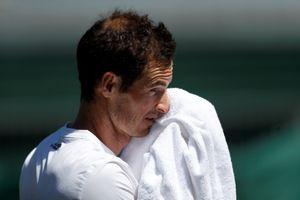 Andy Murray kết thúc sớm mùa giải 2018