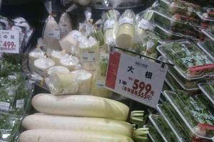 Củ cải Nhật về Việt Nam 250 ngàn/kg: Sự thật mức giá gây xôn xao