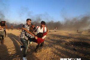 Ít nhất 6 người Palestine thiệt mạng trong các cuộc đụng độ với Israel