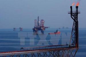 30 năm thu hút FDI: Bài 1: Nền tảng để ngành dầu khí 'cất cánh'