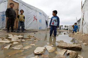 Hơn 4.000 người tị nạn Syria tại Lebanon trở về quê hương
