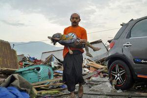 Động đất, sóng thần ở Indonesia: Đã xác nhận 420 người thiệt mạng