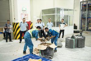 Chùm ảnh: Cận cảnh gần 1 tấn ngà voi, vẩy tê tê nhập lậu vừa bị bắt ở Nội Bài