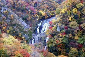 Những địa điểm ngắm lá đỏ nổi tiếng ở Ibaraki