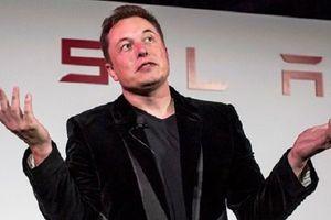 Elon Musk và Tesla bị kiện vì tội lừa đảo
