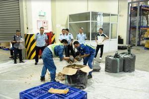Bắt giữ vụ ngà voi 'khủng' tại Sân bay quốc tế Nội Bài