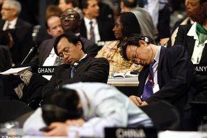 Bí kíp 'chợp mắt' khi đi họp tại Liên Hợp Quốc của cựu Đại sứ Pháp