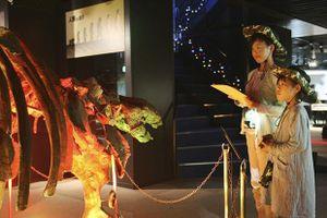 Du khách Nhật hứng khởi với bảo tàng 'khách sạn khủng long'