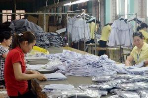 BHXH tỉnh Quảng Ninh đã bàn giao 225.000 sổ BHXH cho NLĐ quản lý