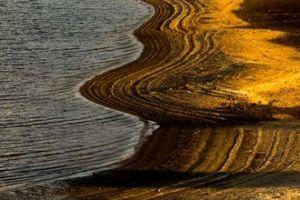 Quảng Nam: Hạn hán hồ Phú Ninh bỗng dưng được 'dát vàng'