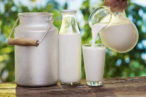 Ngàn tỷ ngân sách cho sữa học đường: Thế giới đã làm thế nào?