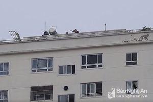 Cả trăm cảnh sát, lính bắn tỉa phong tỏa đường Hồng Bàng, vây bắt người đàn ông cố thủ