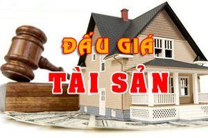 Đấu giá các khoản nợ xấu của Công ty CP Tập đoàn Đông Thiên Phú tại ngân hàng Agribank