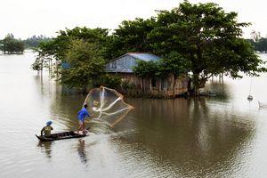 Lũ trên sông Cửu Long đang tạm xuống