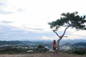#Mytour: Thương nhớ gửi lại Ninh Thuận và Đà Lạt sau mùa hè tuổi 21