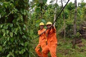 Đắk Nông: Thêm nhiều thôn buôn vùng sâu vùng xa có điện lưới quốc gia