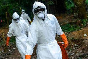 WHO cảnh báo: Virus gây 'chết người' đang lây lan nhanh chóng