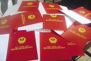Vạch mặt nhóm người dùng sổ đỏ giả đi vay tiền tỷ ở Thái Bình