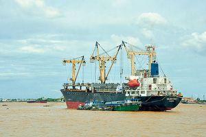 Doanh nghiệp kêu lỗ liên miên, vận tải biển chưa thoát khó